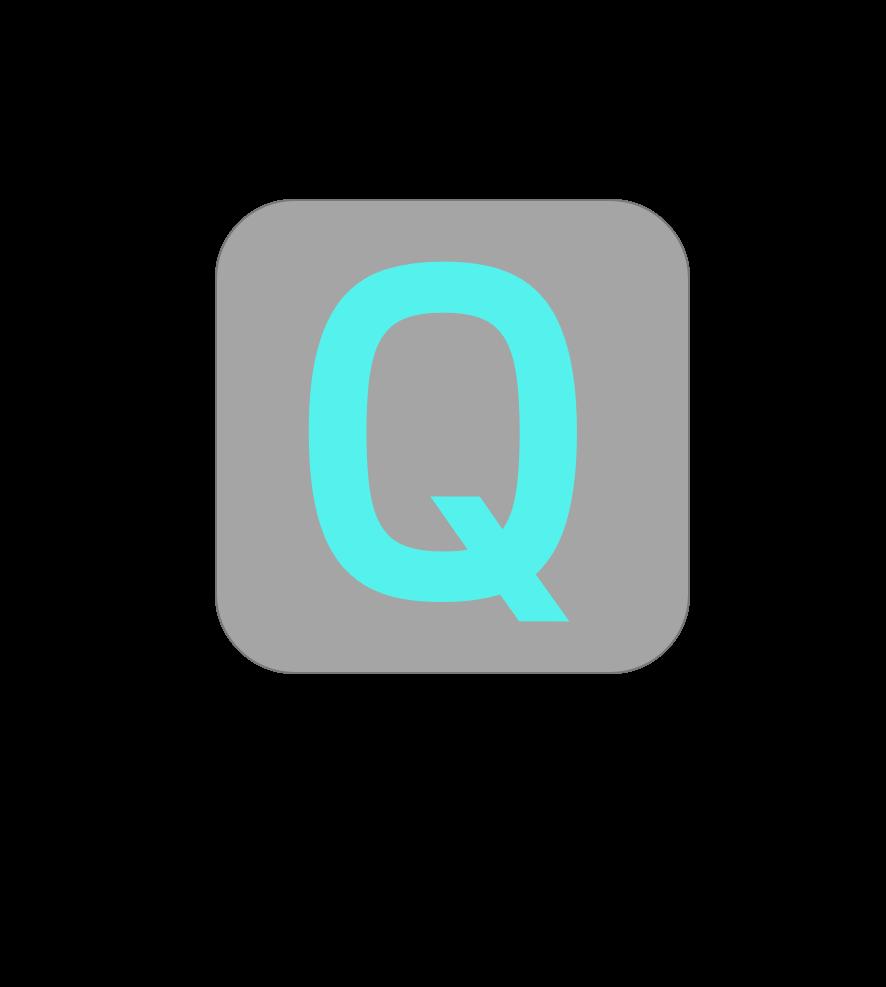 QANAweb